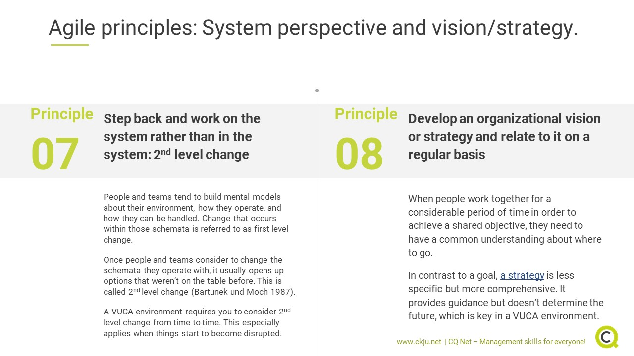 Agile leadership principles 7 and 8: system perspective and vision/strategy.