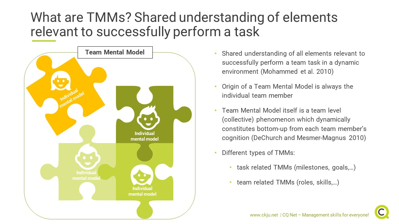 Team Mental Models are the shared understanding of elements relevant to successfully perform a task