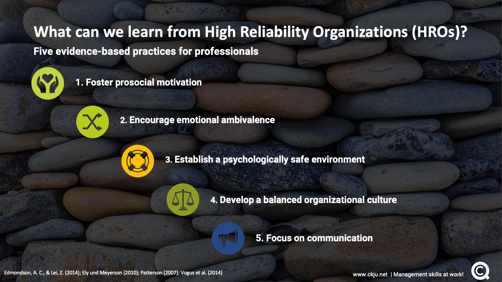 What can we learn from high reliability organizations?