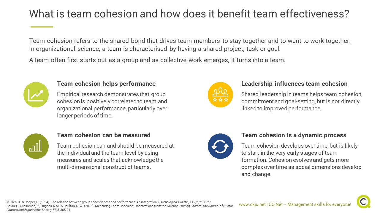 What is team cohesion and how does it benefit performance?