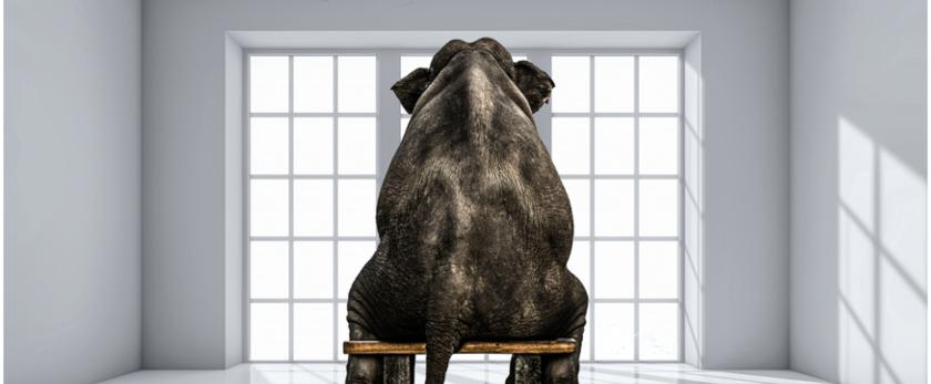 Wie ein Elefant im Porzellanladen: Wie man beim Fällen mutiger Entscheidungen unbeabsichtigte Konsequenzen vermeidet